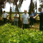 La agroecología toma fuerza en América Latina y el Caribe