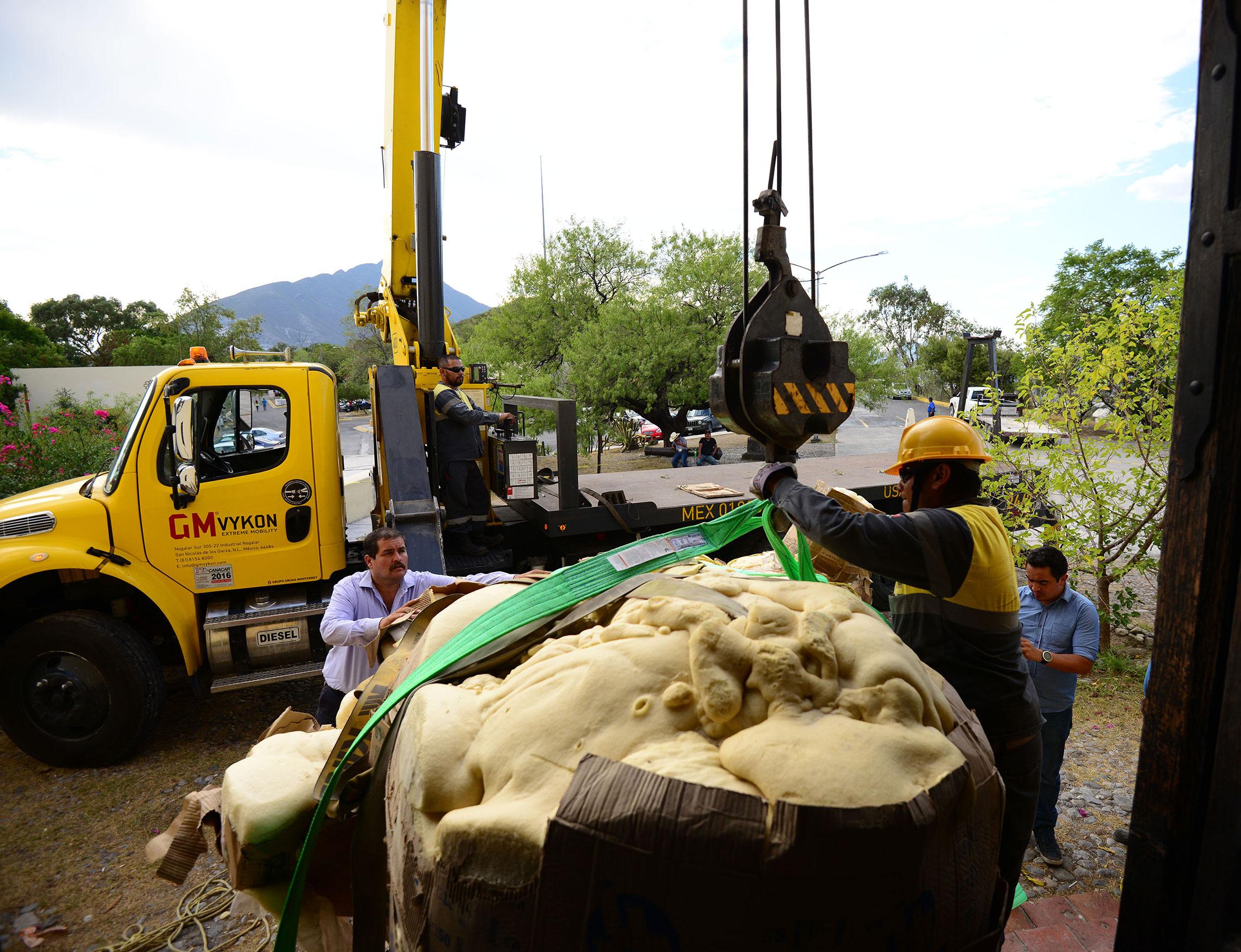 El mamut de Galeana aporta datos sobre un nuevo sitio al norte de México. Foto: Mauricio Marat INAH