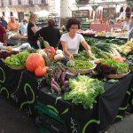 Lanza FAO guía para desarrollar mercados de productores