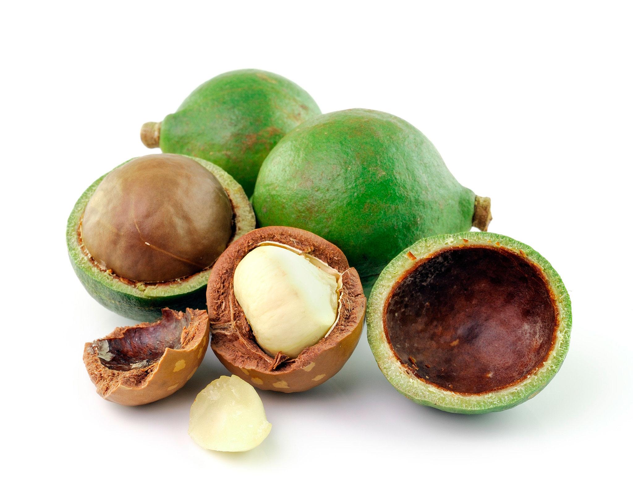 Mantén tu piel hidratada y tersa durante el invierno con macadamia