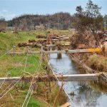 Puerto Rico trabaja para levantarse tras devastación del huracán María